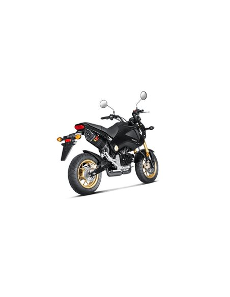 Escape Honda MSX 125 2013-2015 Akrapovic Carbono S-H125SO1-HAPC