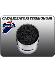 Catalizador Termignoni Y113CAT
