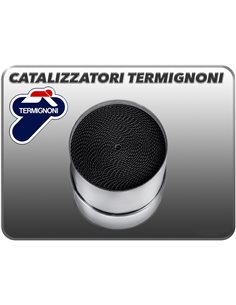 Catalizador Termignoni Y116CAT