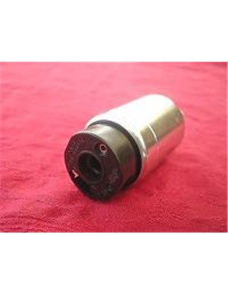 Bomba Gasolina INYECCIÓN 291000511