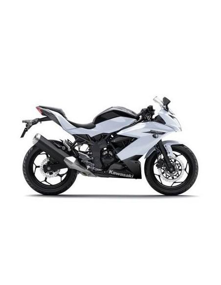250 Ninja SL